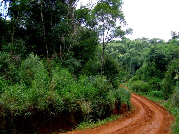Reserva de Biosfera Yaboty