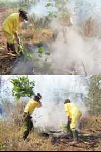 Bomberos pelean palmo a palmo contra el fuego. Unas 150 personas están trabajando para sofocar el incendio.