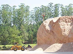 Aumento. Alto Paraná pica en punta en un incremento de lo que se le paga a los productores.