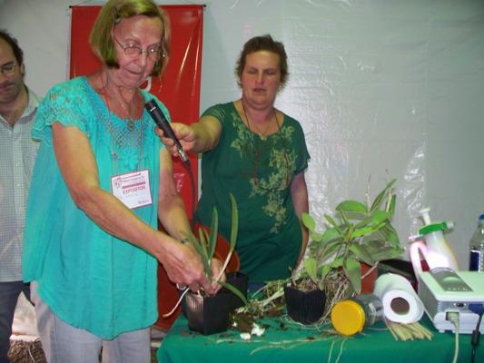 En la Biofábrica, Rita Franke dio una clase práctica de cultivo de orquídea.