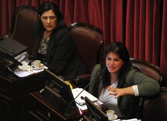 La senadora misionera Sandra Giménez habló en el recinto.