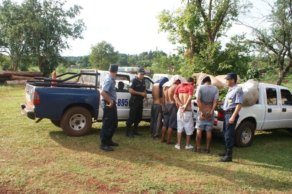 En Oberá se secuestró una camioneta  Ford Ranger con seis raídos de yerba mate.