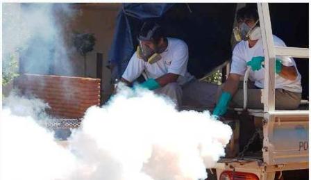 Fumigaron algunos sectores de Posadas.