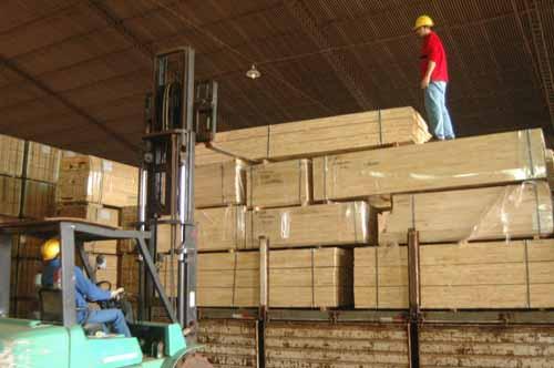 La forestoindustria exporta menos pero sigue siendo en principal rubro.