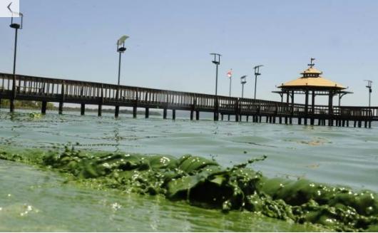 Foto captada el martes en la costa de Areguá (ABC).