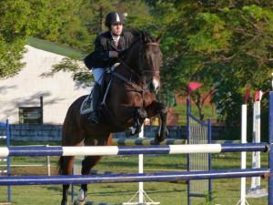 caballos pag14