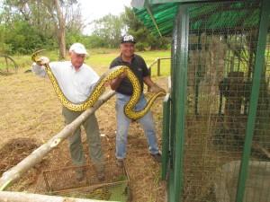 Avanzan lentamente las obras del serpentario en El Puma