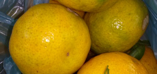 Ofrecen gran variedad de frutas de estación en el Mercado Concentrador