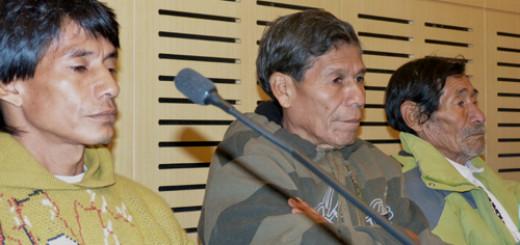 Comunidades Mbya Guaraní del Lote 8 en Yabotí lograrán la titularidad de sus tierras