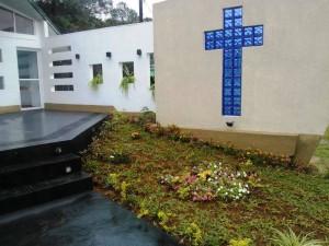 """300 durantas y diez plantas ornamentales colocó la Municipalidad en el nuevo """"Parque Ruth Ingrid Schmidt"""""""