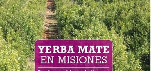 Presentaron un libro sobre la Yerba Mate y la producción cooperativista