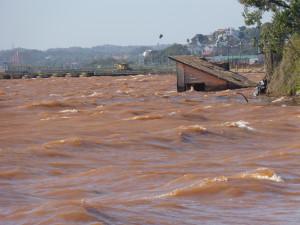 El Paraná arrastra basura que hace peligrar la navegación