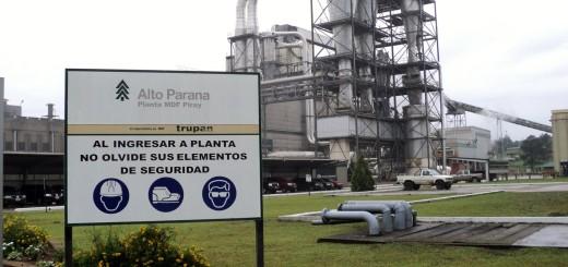 Alto Paraná aumentó casi el 50 por ciento su facturación en el primer trimestre del año: 952 millones