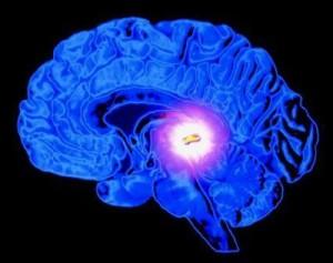 Semirario de activación de la glándula pineal en Posadas