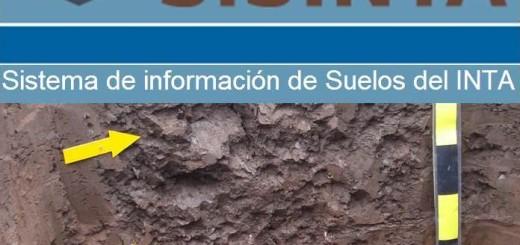"""Expertos del INTA desarrollarán una """"Wikipedia"""" de los suelos argentinos"""