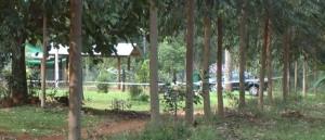 Caso Knott: Secuestraron cuatro capuchas, ocho proyectiles calibre 22 y celulares que se sumarán a la investigación por el crimen del empresario