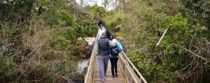 Hoy rehabilitaron la totalidad del Circuito Superior en Cataratas del Iguazú