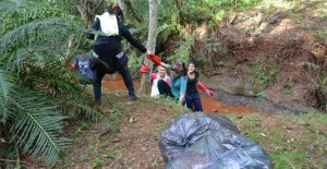 San Vicente: alumnos limpiaron el arroyo del Jardín Botánico