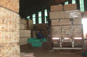 Instituto de Inteligencia Comercial del sector forestal promueve proyecto de políticas de exportación