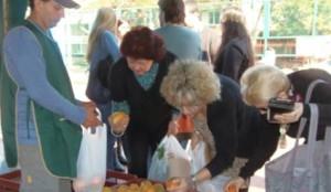Feria del Mercado Concentrador se ubicó en la avenida Corrientes de Posadas