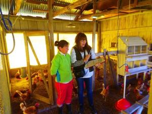 Pro-Alimento: Técnicos del Agro visitan las chacras y realizan auditorías y capacitaciones a granjas