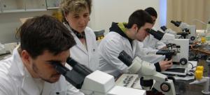 Convocaron a postulantes a los subsidios para la investigación en Ciencias Biomédicas en la provincia