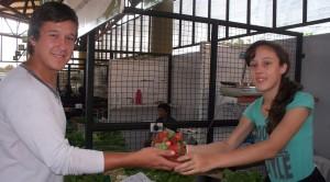 Llegó la frutilla misionera bien fresca y casi orgánica al Mercado Concentrador