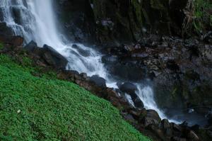 El agua, una fuente de desarrollo (*)