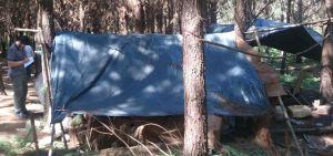 RENATEA detectó campamento ilegal de tareferos en establecimiento yerbatero de El Alcázar
