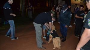 Amplio dispositivo policial garantizó la seguridad en la noche universitaria del Parque de las Naciones