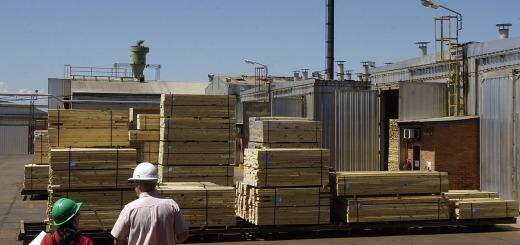Empresas foresto-industriales atraviesan la peor crisis de los últimos años