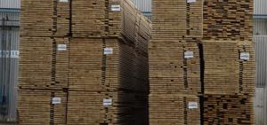 Importadores de Latinoamérica visitarán Misiones interesados por los productos madereros