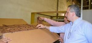 Passalacqua recorrió instalaciones de la Cooperativa Tabacalera de Misiones, en Leandro N. Alem