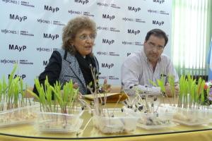 Entregan 77 mil kilos de semillas criollas a productores de 55 municipios