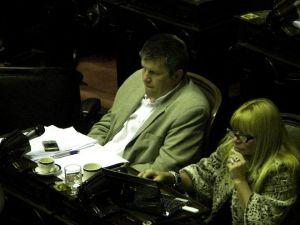 Debate en Diputados: Para Alex Ziegler se busca garantizar los derechos del consumidor