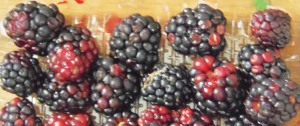 Ofrecen frambuesa en el Mercado Concentrador