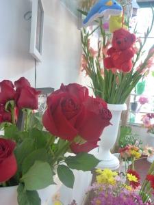Florería Brisa, el lugar para un regalo especial