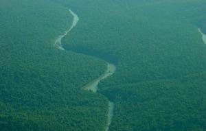 Histórico acuerdo restituye cuatro mil hectáreas a la comunidad guaraní