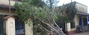 Susto en Santo Tomé por un fuerte temporal el sábado por la noche