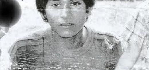 Buscan en Andresito a un menor desaparecido