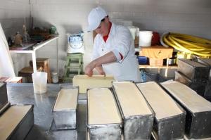 Nueva cooperativa impulsa la producción de quesos y frutas en Aurora