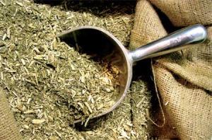 Rige la suspensión de la cosecha y secanza de yerba mate