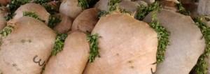 La sesión de precios de la yerba continuará el 14 de noviembre