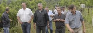 Con buenas perspectivas comerciales avanzan las plantaciones de nuez pecan