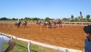 Turf: una multitud disfrutó de los caballos en el Hipódromo; mañana es el gran día, se corre la Copa Challenger