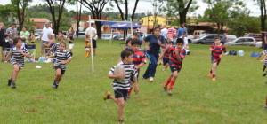 Más de 700 chicos le dan forma al Regional de Rugby infantil en Posadas
