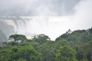 #CataratasDay: Cataratas del Iguazú fue de lo más buscado, también en el Cibermonday