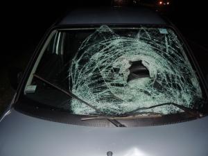 Automovilista atropelló y mató a un peatón anoche en San José