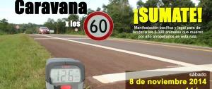 La Red Yaguareté invita a la marcha contra los atropellamientos de animales silvestres
