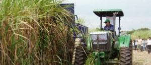 Presentaron máquina cosechadora de caña de azúcar en San Javier